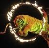 Цирки в Ревде
